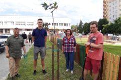 Akcja – sadzimy drzewa